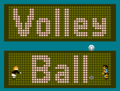 Volleyball logo.png