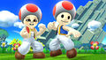 DLC Costume Toad Outfit.jpg