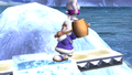 Ice Climbers Popo Idle Pose 1 Brawl.png