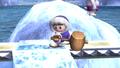 Ice Climbers Popo Idle Pose 2 Brawl.png