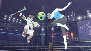 Wii Fit Trainer Soccer Ball.jpg